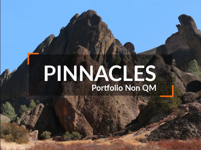 Wholesale Non-QM Loans